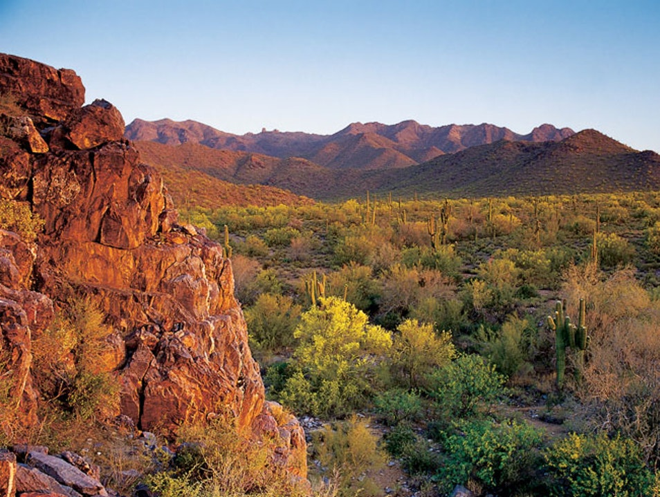 Arizona: America's Desert Gem Young Arizona United States