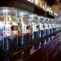 Seven Cups Fine Chinese Teas Tucson Arizona United States