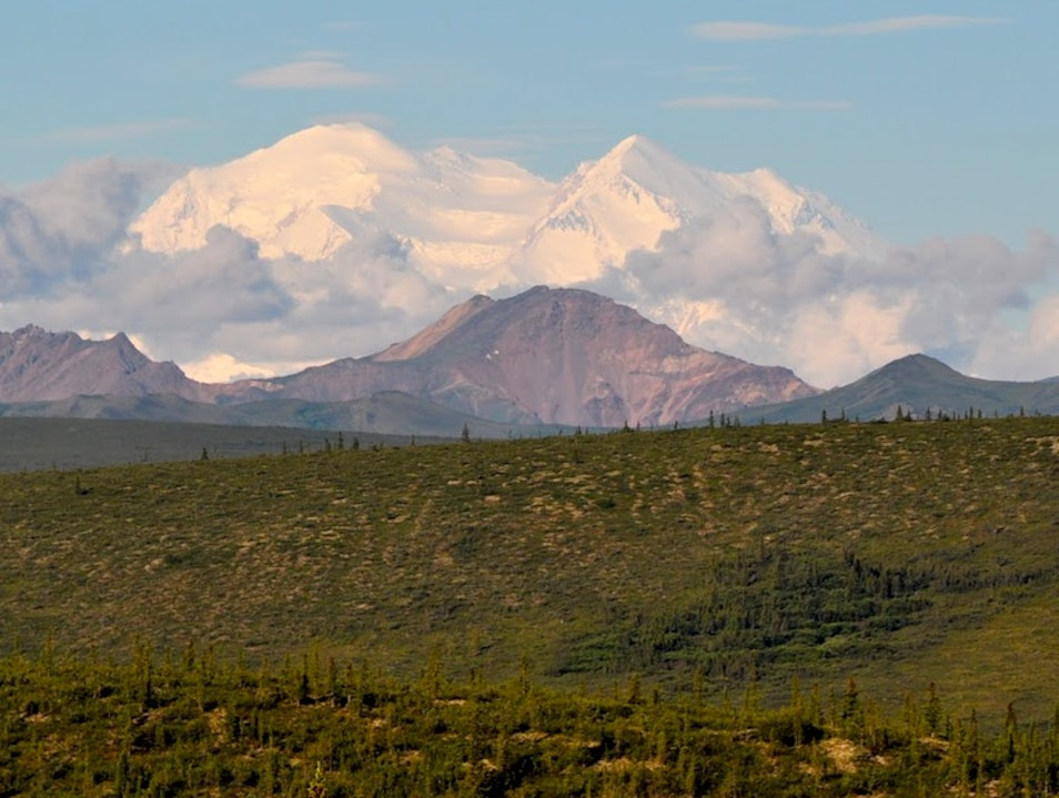 A Day in Denali Denali National Park and Preserve Alaska United States