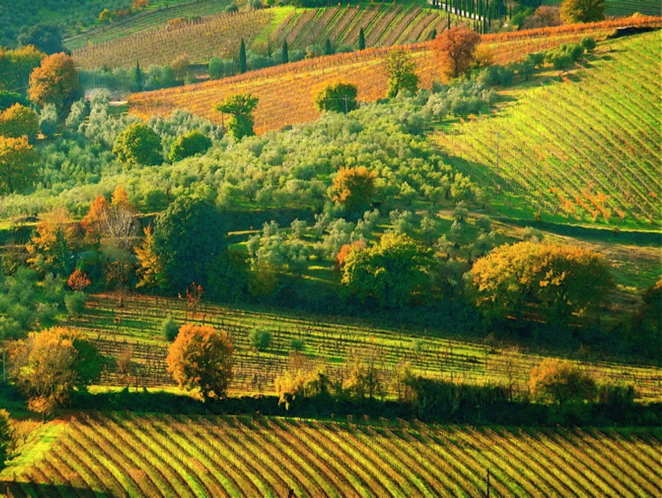 Autumn colors of Tuscany