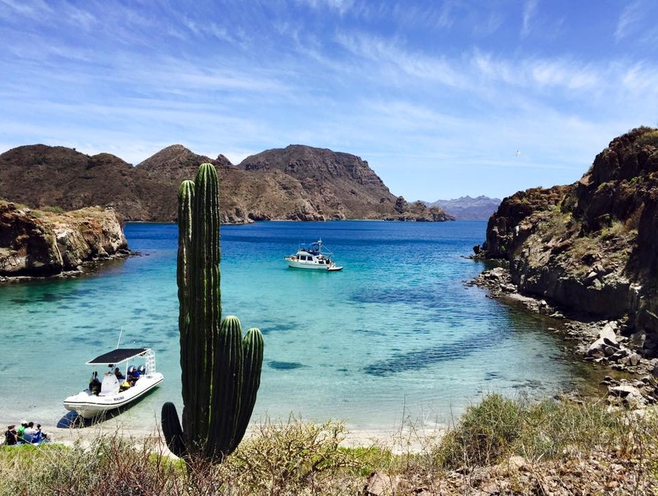 Honeymoon Beach = ahhhhmazing. Loreto  Mexico