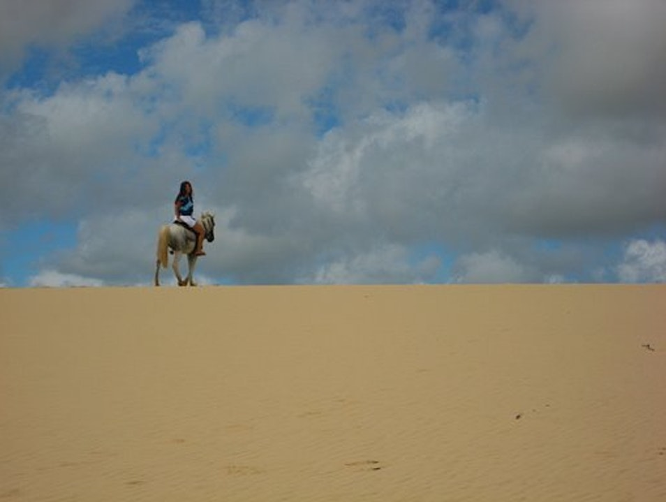 I've been through the desert on a horse with no name