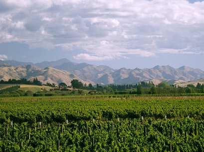 Wineries of Marlborough Blenheim  New Zealand
