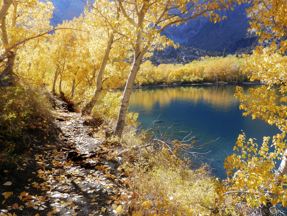 Fall Colors at Convict Lake Mammoth Lakes California United States