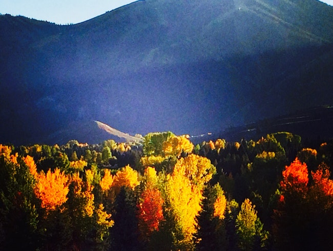 Fall in Love with Sun Valley