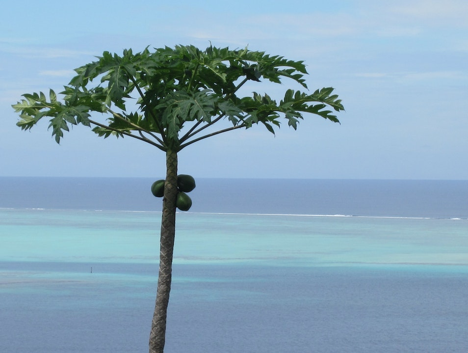 High above the sea Vaitape  French Polynesia