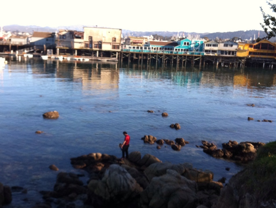 On Not Being A Tourist In Monterey