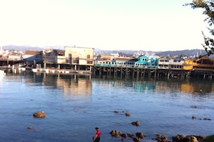 A Family-Friendly Trip to Monterey Bay