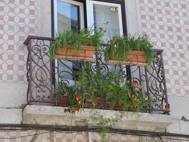 Window with Balcony