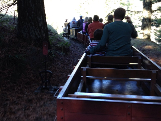 Steam Trains at Tilden Park
