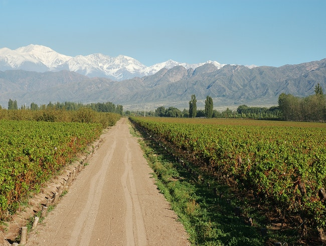 Touring Mendoza's Uco Valley