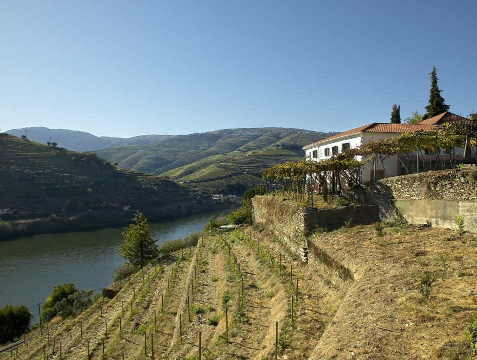 Boutique and Charm in the Douro Valley