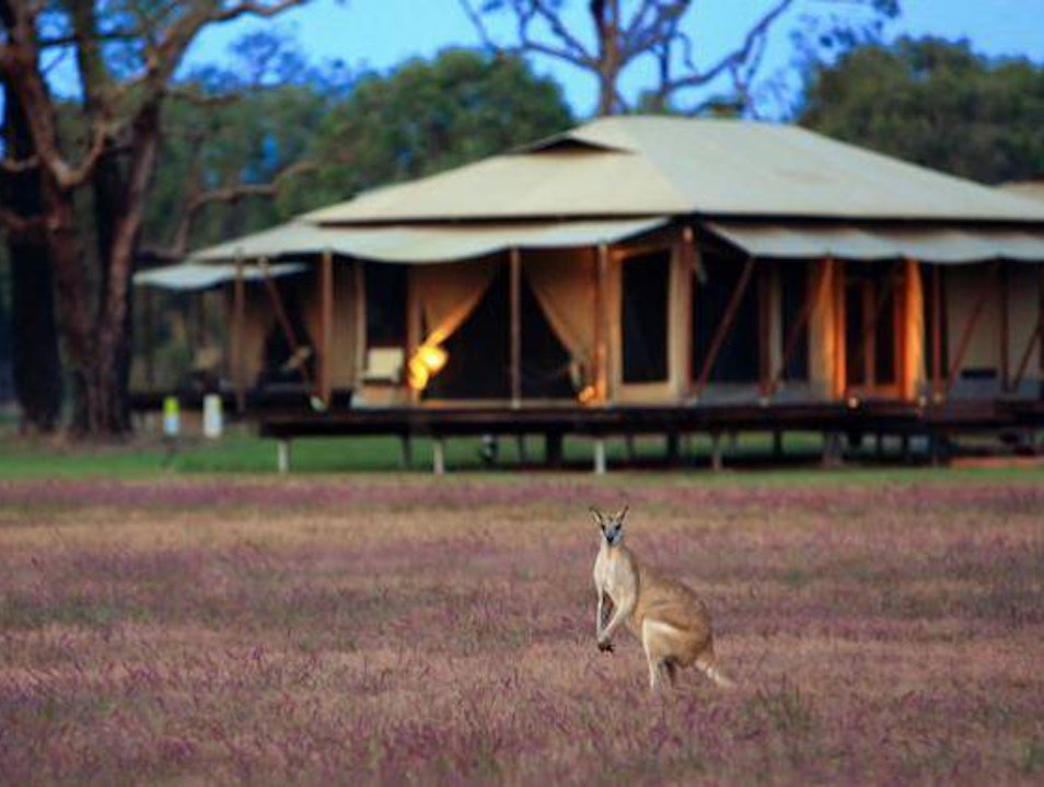 Plan an Ecofriendly Stay at the Wildman Wilderness Lodge Point Stuart  Australia