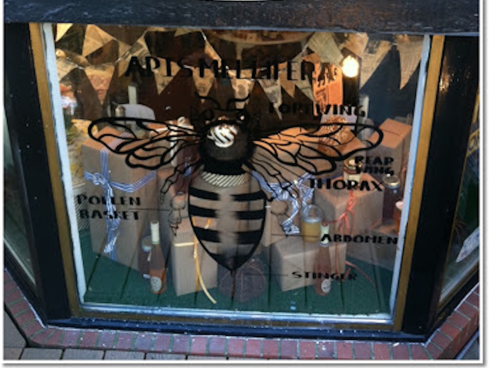 Cambridge is A Buzz with Follow the Honey Cambridge Massachusetts United States