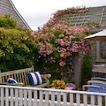 Siasconset Nantucket Massachusetts United States