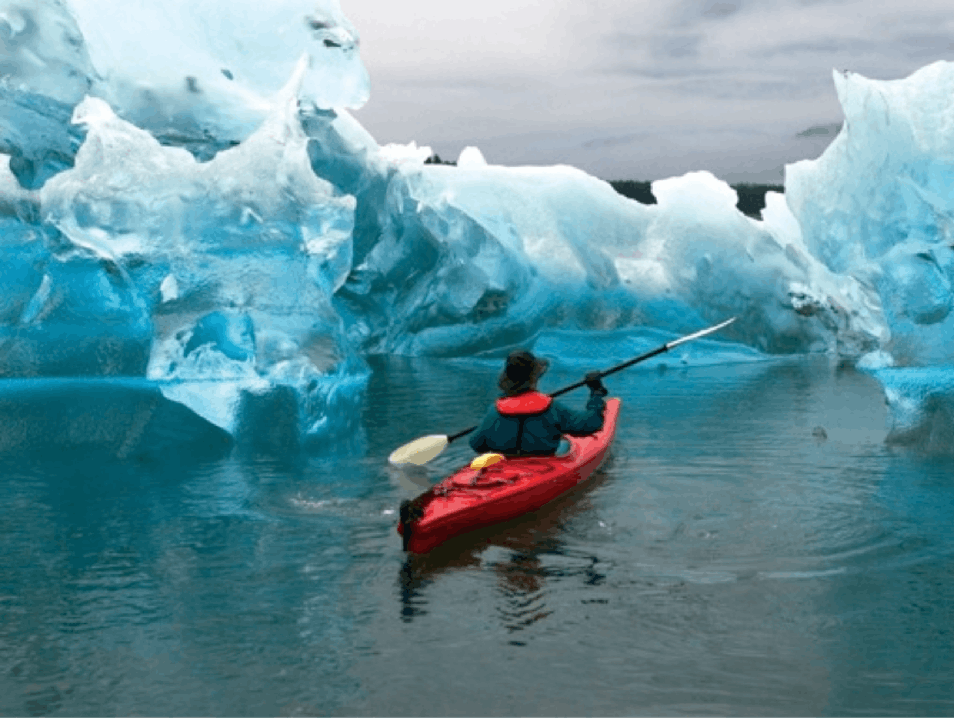 Chasing the Blues in Alaska's Fjords Alaska  United States
