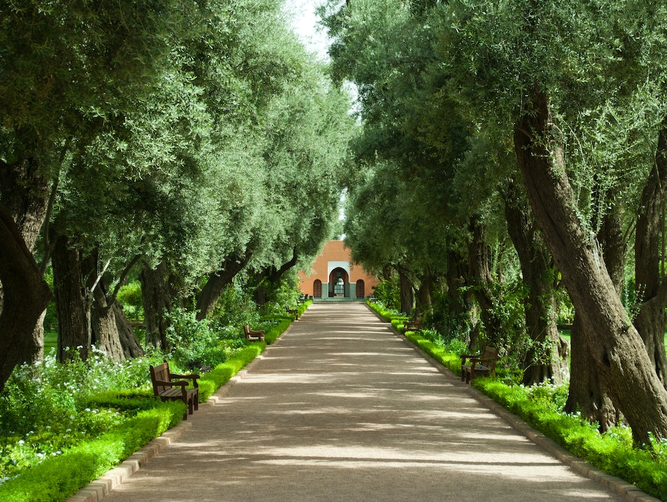 Wander the luxurious gardens at La Mamounia