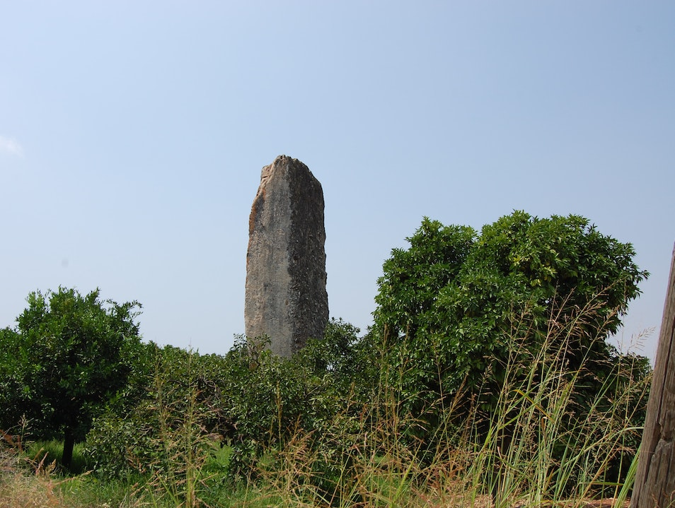 Visit a 6 m tall obelisk in the middle of an orange orchard