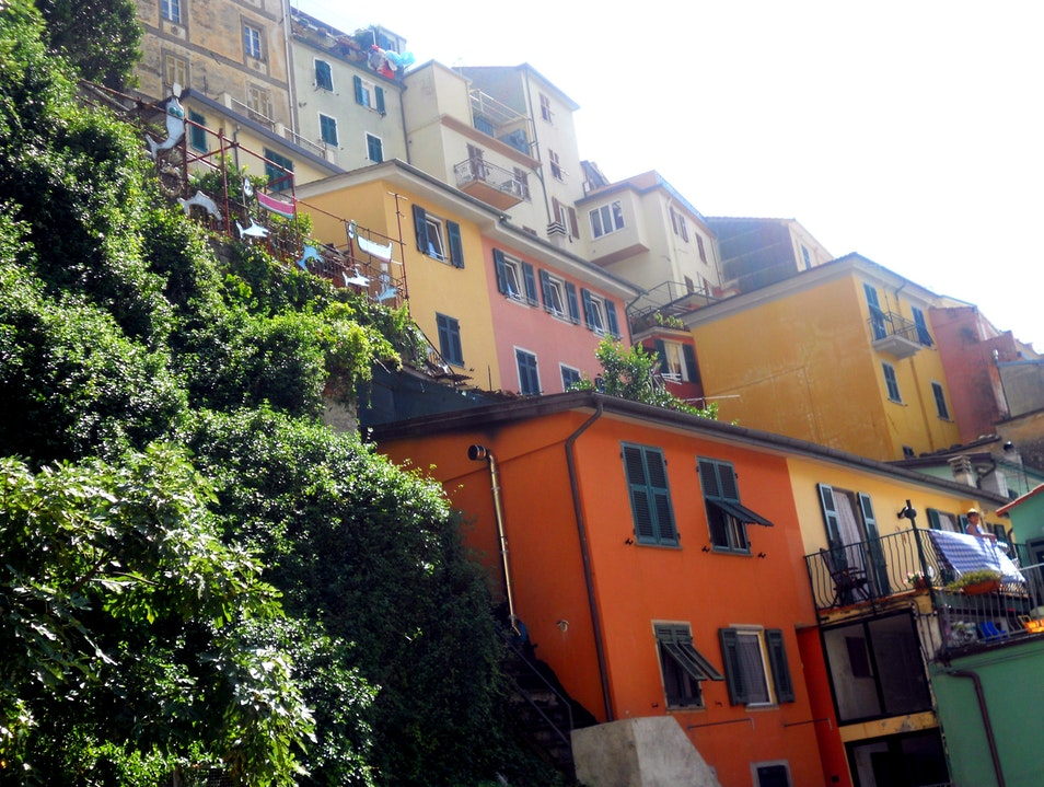 Vernazza cliffside houses. Vernazza  Italy