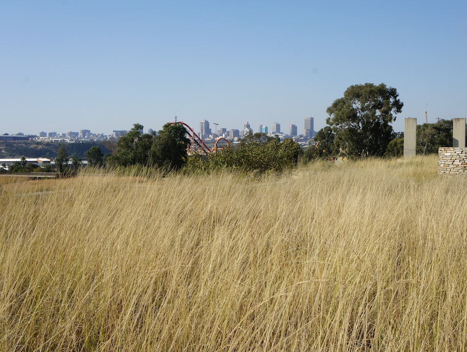 View of the CBD from the Apartheid Museum Johannesburg  South Africa