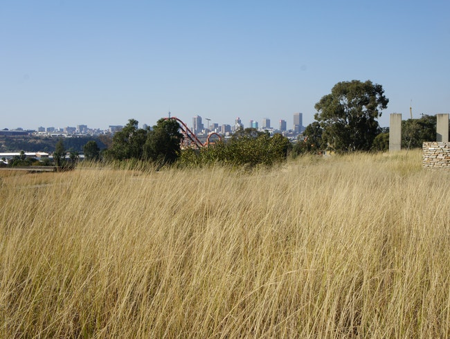 View of the CBD from the Apartheid Museum
