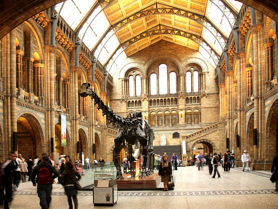 The Natural History Museum in London London  United Kingdom
