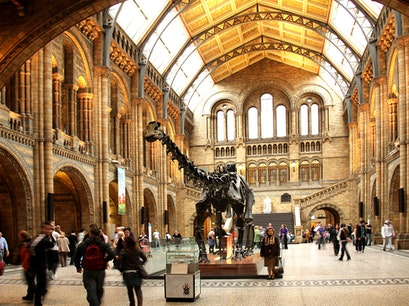 Natural History Museum London  United Kingdom