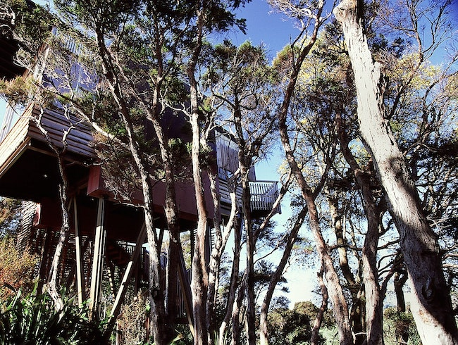 Hapuku Lodge & Tree Houses