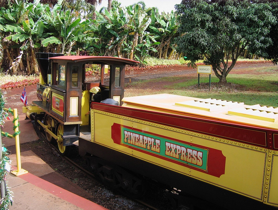 All Aboard the Pineapple Express Wahiawa Hawaii United States