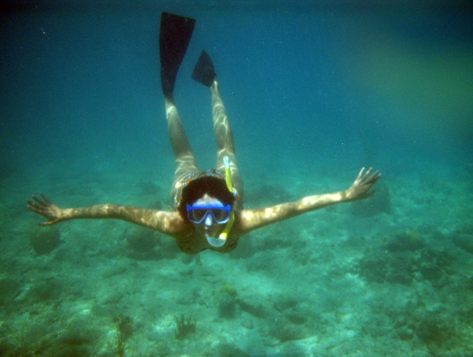 Drift Dive or Snorkel Along the SE Florida Reef Tract