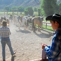 CM Ranch Dubois Wyoming United States