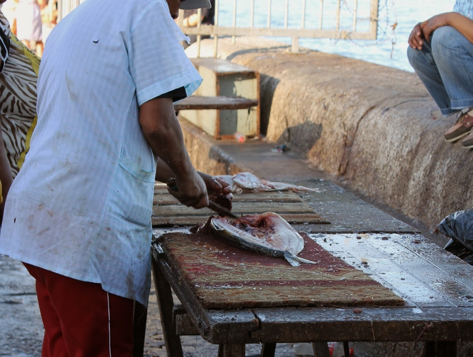 Fresh Fish in Kalk Bay Cape Town  South Africa