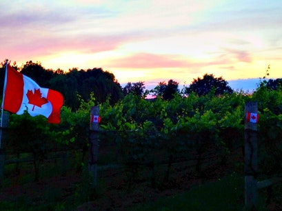 Ravine Vineyard Estate Winery Niagara On The Lake  Canada