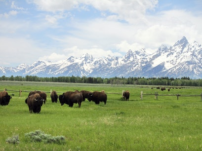 Grand Teton National Park Jackson Wyoming United States