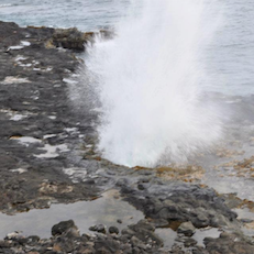 Spouting Horn Scenic Lookout