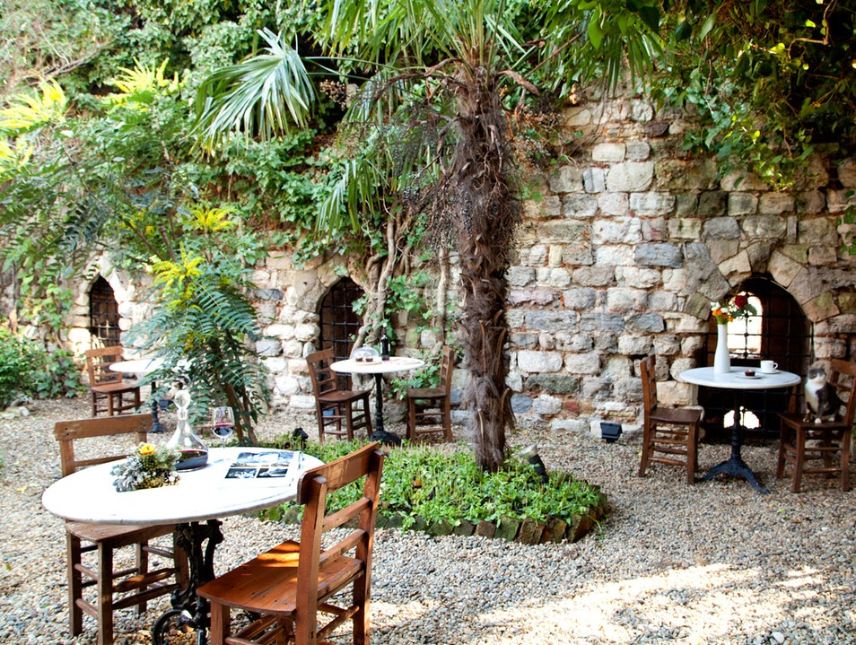 A Charming Oasis in the Old City  Istanbul  Turkey