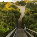 Steps Beach Nantucket Massachusetts United States