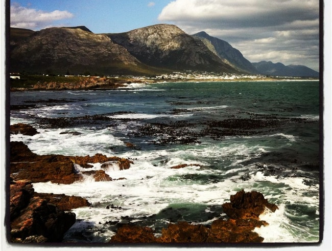Take it Easy Like The Whales of Hermanus