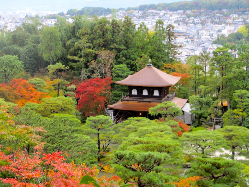 Kyoto in the time for luck Kyoto  Japan