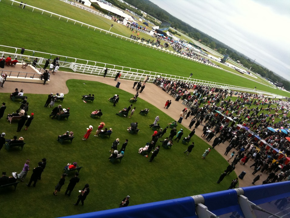 Watch the gee-gees at Royal Ascot Ascot  United Kingdom