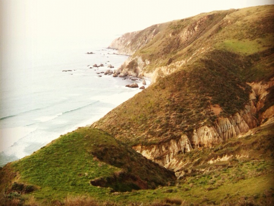 On Top Of The World: Tomales Point