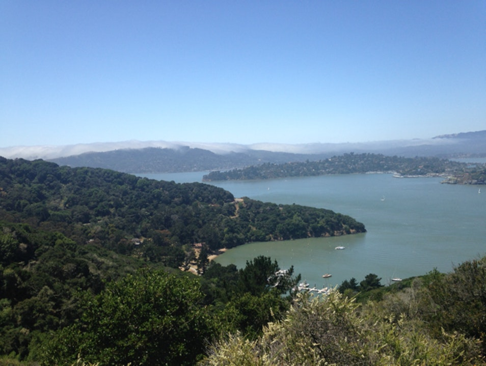 Day Trip from San Francisco Tiburon California United States