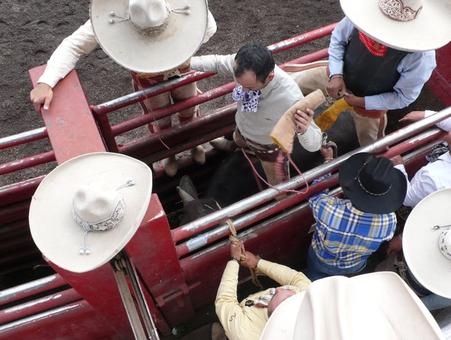 Things to Do at a Mexican Rodeo