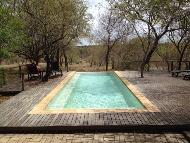 Amazing, Affordable, Fantastic Safari Lodge