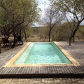 Toro Yaka Bush Lodge Maruleng  South Africa