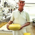 Barrys Bay Traditional Cheese Duvauchelle  New Zealand