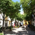 Sevilla Walking Tours Seville  Spain