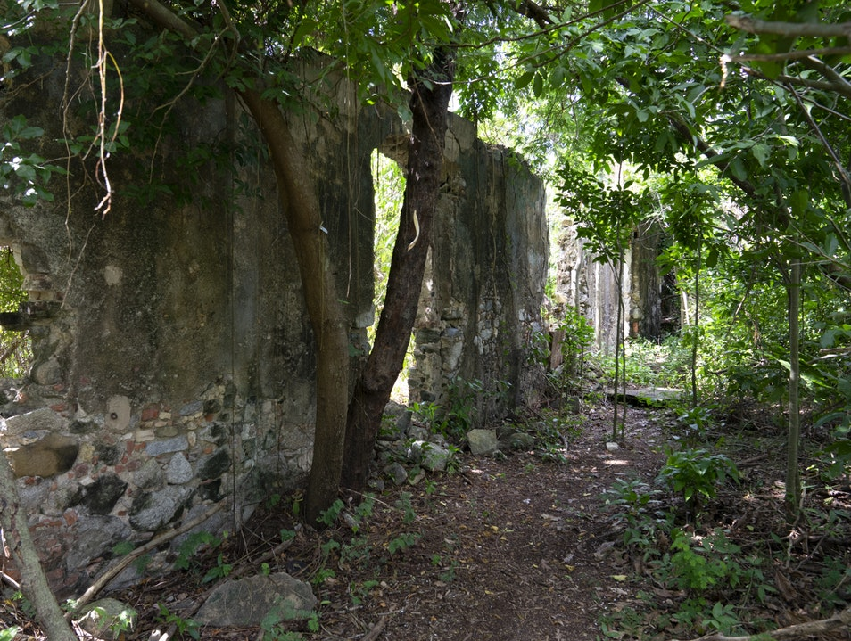 Explore the Sugar Mill Ruins Humacao  Puerto Rico