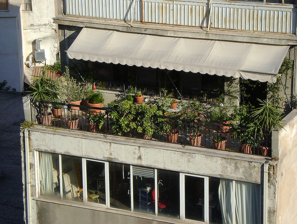 Balcony garden in Athens Athens  Greece