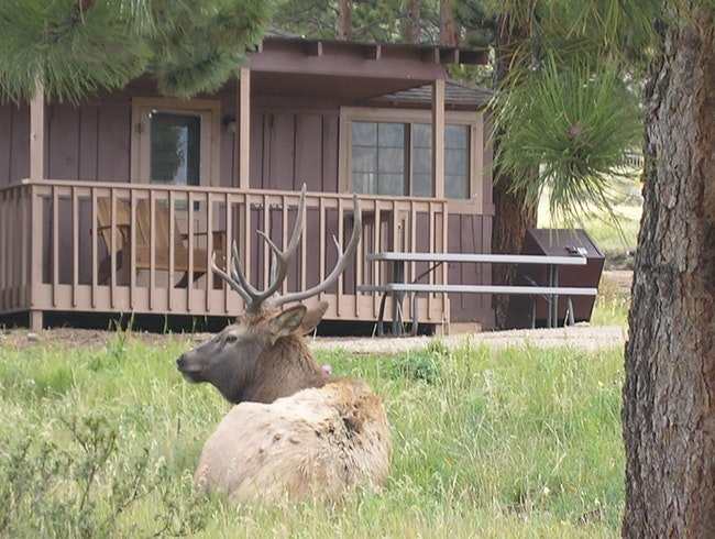 Reserve a Family Cabin Near Rocky Mountain National Park